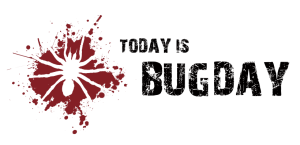 Today is Bug Day!