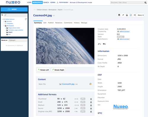 Image in the Nuxeo Platform